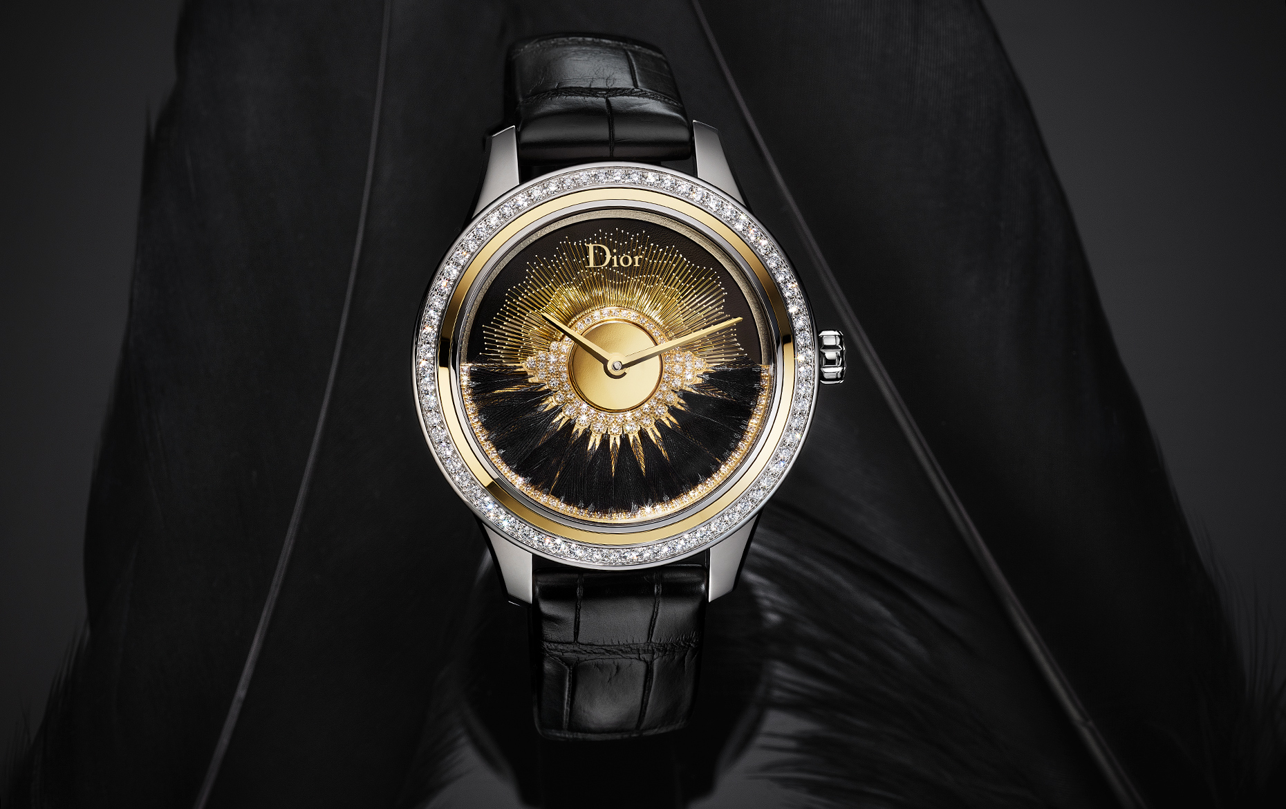 Dior Ball Black Feather Watch